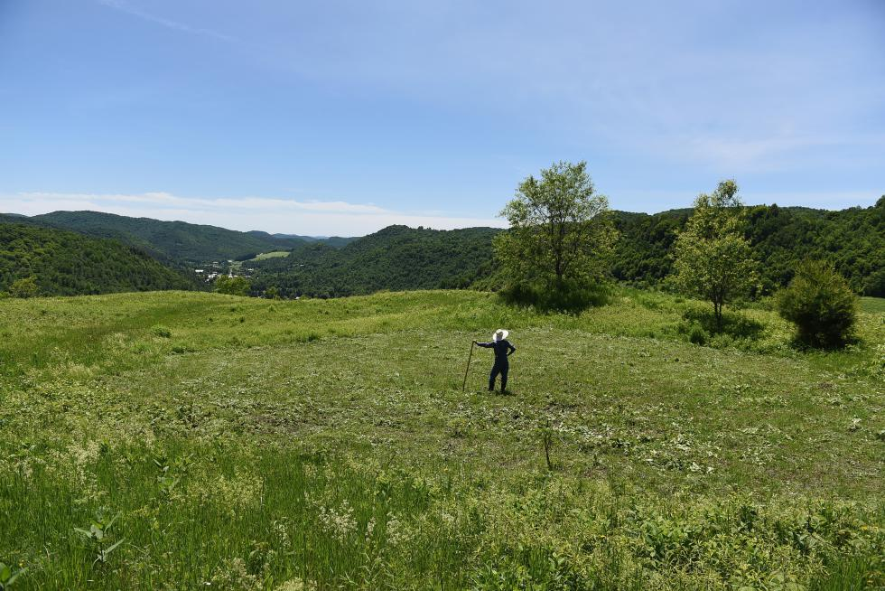 Misha Johnson looks over land that he has just cleared using a scythe on June 18, 2015 in Chelsea, Vt. Johnson cleared the spot for his wedding ceremony.  (Valley News - Jennifer Hauck) <p><i>Copyright © Valley News. May not be reprinted or used online without permission. Send requests to permission@vnews.com.</i></p> - Jennifer Hauck | Valley News