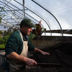 The Business of Agriculture: Plant businesses big and small are firing up for the growing season