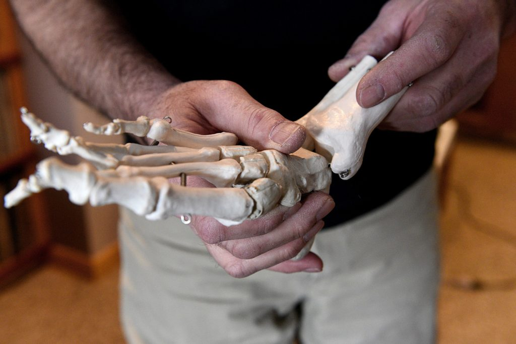 ( NO BONES ABOUT IT Pedorthist David Strousse uses a model to show how joints work in a foot.