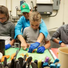 The Business of Agriculture: Farm-to-School Programs Sow the Next Generation of Local Agriculture Supporters