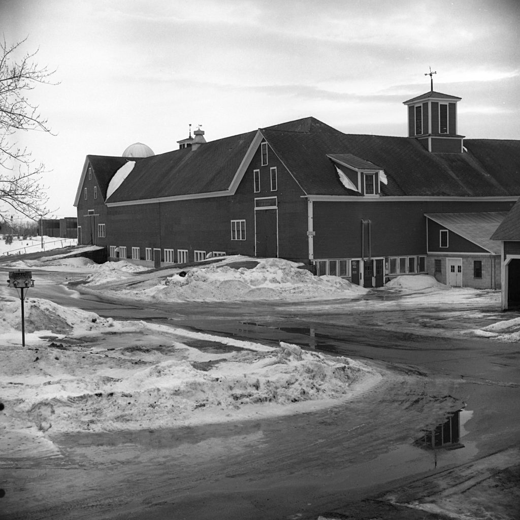 This large barn is one of several buildings on the Grafton County Farm in North Haverhill, N.H., in Feb. 1973. The building is 325 feet long and houses the milking herd as well as the beef cattle and heifers. The swine are kept in another building. (Valley News - George Lambert) Copyright Valley News. May not be reprinted or used online without permission. Send requests to permission@vnews.com.