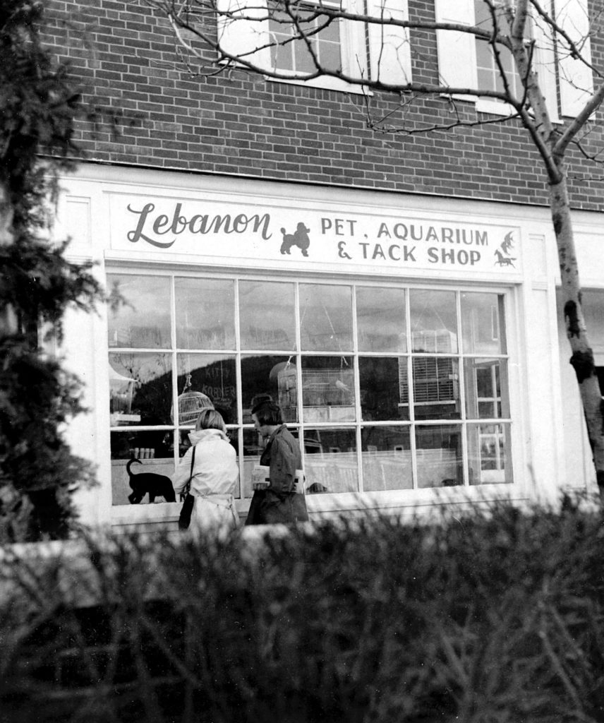 Lebanon Pet, Aquarium and Tack Shop on the Lebanon Mall in late 1975. Asian Superstore is in the location in 2018. (Valley News photograph) Copyright Valley News. May not be reprinted or used online without permission. Send requests to permission@vnews.com.