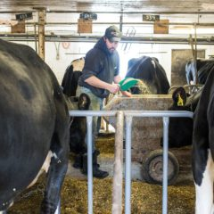 The Last of Its Kind: N.H.'s Grafton County Farm Continues to Produce