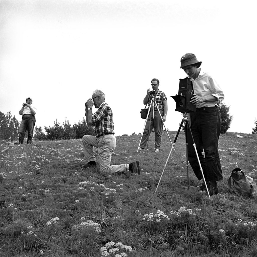 Photographers' Paradise: The Upper Valley Camera Club enjoys an outing on June 5, 1966. (Valley News - Larry McDonald) Copyright Valley News. May not be reprinted or used online without permission. Send requests to permission@vnews.com.