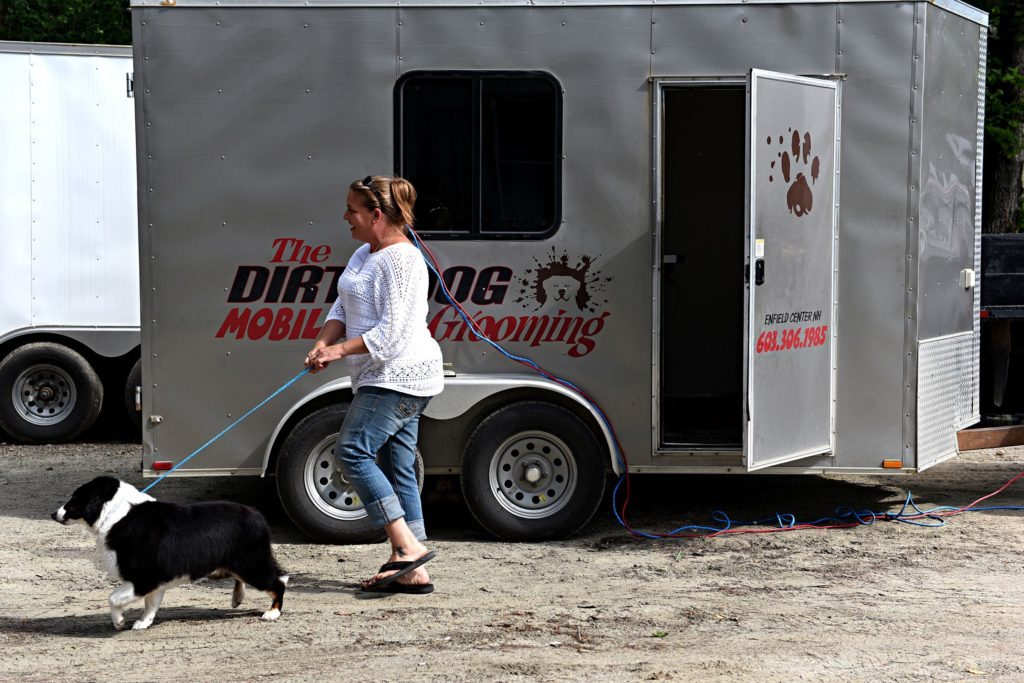 After a being groomed, Smokey is walked back to his home in Canaan, N.H., by Samantha Stanford on Friday, June 28, 2019. (Valley News - Jennifer Hauck) Copyright Valley News. May not be reprinted or used online without permission. Send requests to permission@vnews.com.