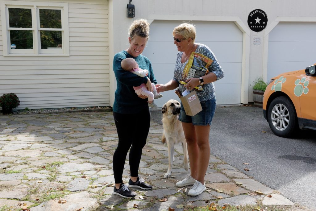 Max, a German shepherd, sniffs at a bag of treats, part of a pet food delivery from Unleashed, as the store owner Penny Murano, right, is greeted by Katie MacKenna and her baby Madison in New London, Wednesday, Sept. 25, 2019. Murano added a pet food subscription delivery service to her business in 2018 and is testing the water with same-day deliveries. (Valley News - James M. Patterson) Copyright Valley News. May not be reprinted or used online without permission. Send requests to permission@vnews.com.