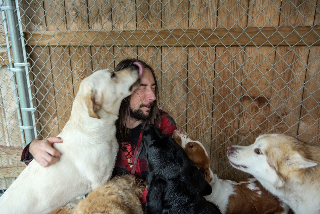 Chris Clough gets a pile of affection from a group of daycare dogs after playing with them in the yard of Mountain View Pet Resort in Canaan, N.H., Thursday, Sept. 26, 2019. Clough and his wife Kori are on call around the clock to attend to the needs of dogs boarding at the facility. (Valley News - James M. Patterson) Copyright Valley News. May not be reprinted or used online without permission. Send requests to permission@vnews.com.