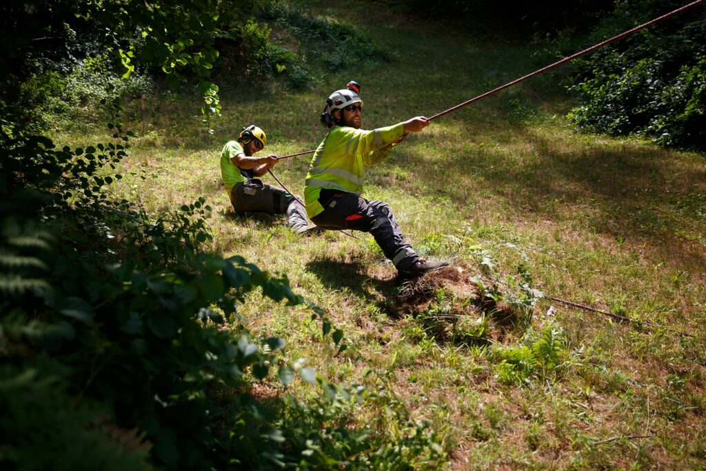 Logan Shank, left, of Springfield, N.H., and Nathaniel Moore, of Canaan, N.H., pull on a rope tied to a tree as they remove it at a home in Hanover, N.H., on Wednesday, June 30, 2021. (Valley News / Report For America - Alex Driehaus) Copyright Valley News. May not be reprinted or used online without permission. Send requests to permission@vnews.com.